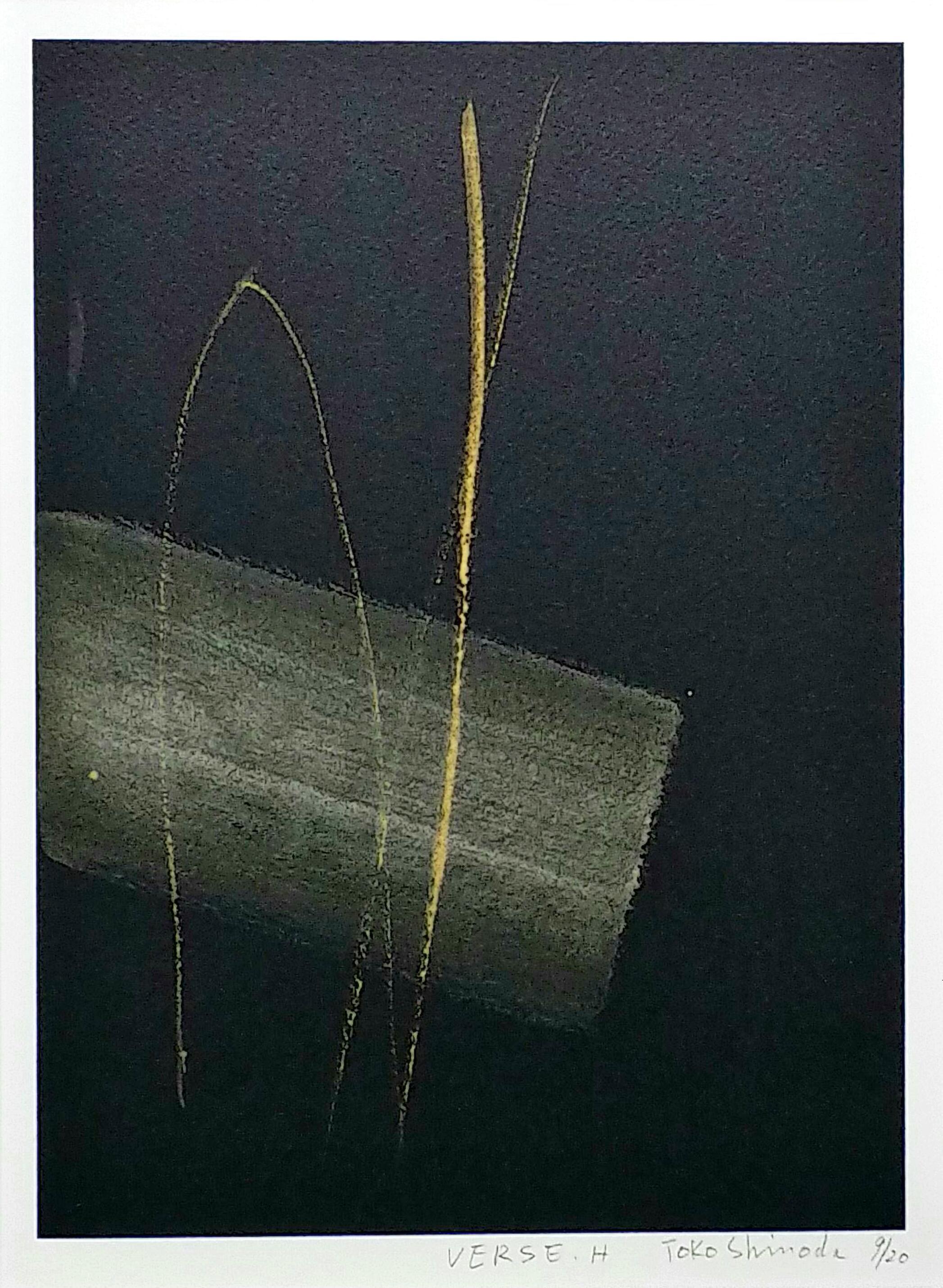 Versa.H」-手彩色リトグラフ30×22cm.jpg