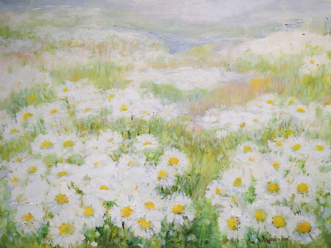 14.Meadow-of-ox-eye-daisy-600×800-scaled.jpg
